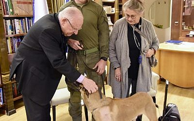 President Reuven Rivlin, left, and his wife Nechama Rivlin greet police dog Rambo and officers who together tracked down the Barkan attack terrorist Ashraf Na'alowa, at the President's Residence in Jerusalem, December 25, 2018. (Courtesy/Tomer Reichman)
