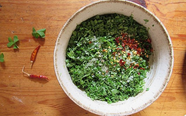 Wild sorrel chimichurri salad, from Ilana Stein and Davidi Maller's Ein Kerem kitchen (Courtesy Ilana Stein)