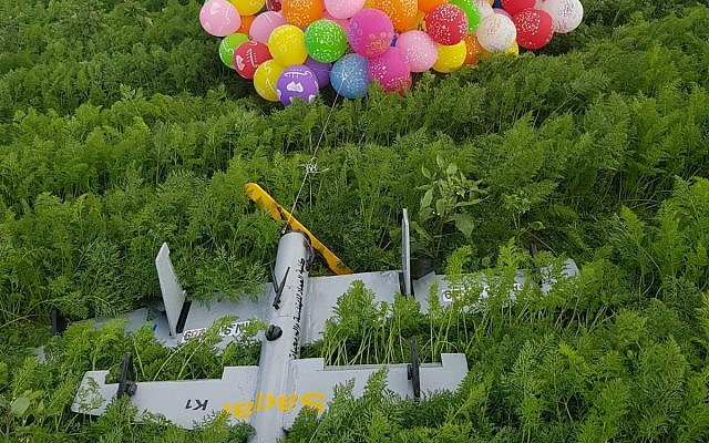 A drone-shaped device from the Gaza Strip, borne by dozens of helium balloons, lands in a carrot field in southern Israel on January 6 ,2019. (Courtesy)