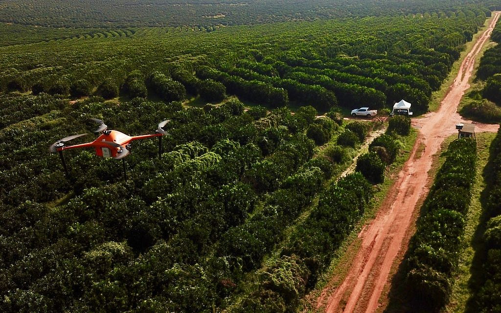 Barking up the right tree: Israeli startup SeeTree aims at better fruit yield