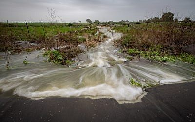 A stream overflows with water after heavy rains on the Golan Heights, January 14, 2019. (Maor Kinsbursky/Flash90)