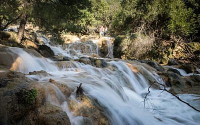 The Farod waterfalls flow after heavy rains in the Lower Galilee on January 19, 2019. (Hadas Parush/Flash90)