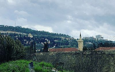 The view from the ancient terraces surrounding Ilana Stein's Ein Kerem home (Jessica Steinberg/Times of Israel)