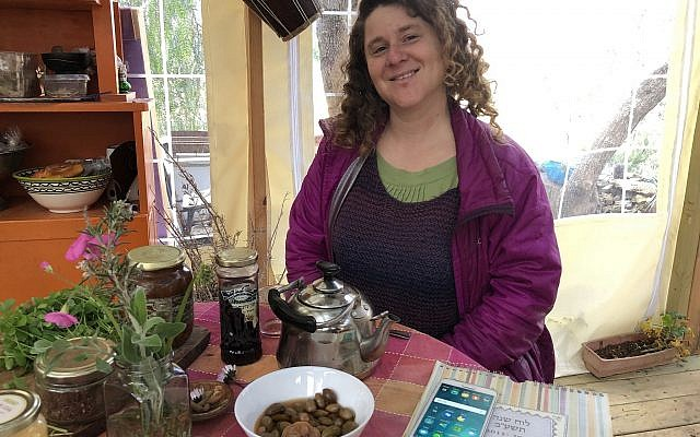 Illustrator and forager Ilana Stein at her kitchen table in Ein Kerem (Jessica Steinberg/Times of Israel)