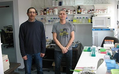 CEO and founder of the startup Accelerated Evolution Biotechnologies Ltd. (AEBI) Ilan Morad, right, with Hanan Itzhaki, the chief science officer, at their lab (Courtesy)