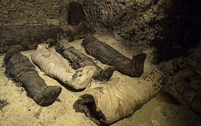 Mummies lie in a recently discovered burial chamber in the desert province of Minya, south of Cairo, Egypt on February 2, 2019. (AP Photo/Roger Anis)