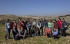 In this Friday, Jan. 25, 2019 photo, American rabbinical students plant olive trees near the West Bank village of Attuwani, south of Hebron. (AP Photo/Nasser Nasser)