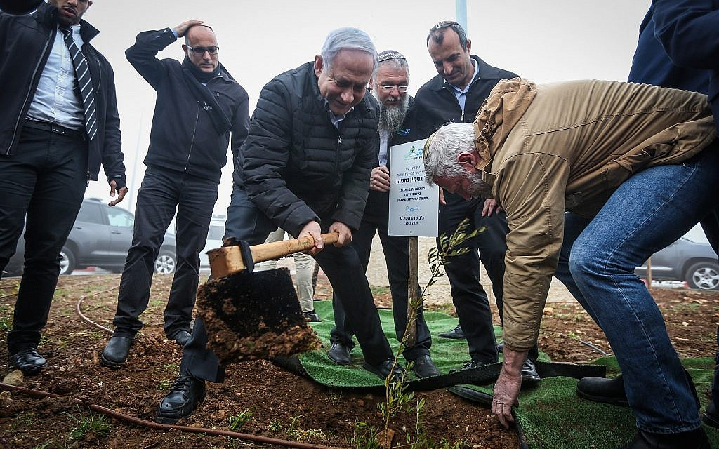 Prime Minister Benjamin Netanyahu plants an olive tree at the Netiv Ha'avot neighborhood in the Elazar settlement in the West Bank, on January 28, 2019. (Marc Israel Sellem/Pool)