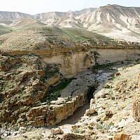 Darga River near the Dead Sea. (Wikipedia/Attribution/Ester Inbar)
