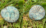 The two sides of the ancient coin discovered on February 6, 2019 in the Lachish region, dating back to the Bar Kochba revolt in 133 or 134 CE. (Shiri Burchard)