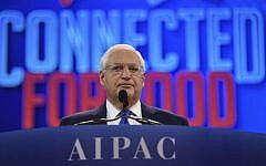 US Ambassador to Israel David Friedman speaks during the annual AIPAC conference in Washington on March 26, 2019. (Jim Watson/AFP)
