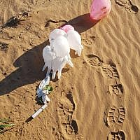 A suspicious device, attached to balloons, which was found in the Eshkol Regional Council, March 11, 2019. (Eshkol Regional Council security)