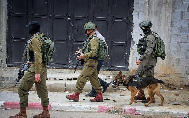 IDF soldiers seen during a raid in the village of Bruqin near the West Bank town of Salfit on March 17, 2019. (Flash90)