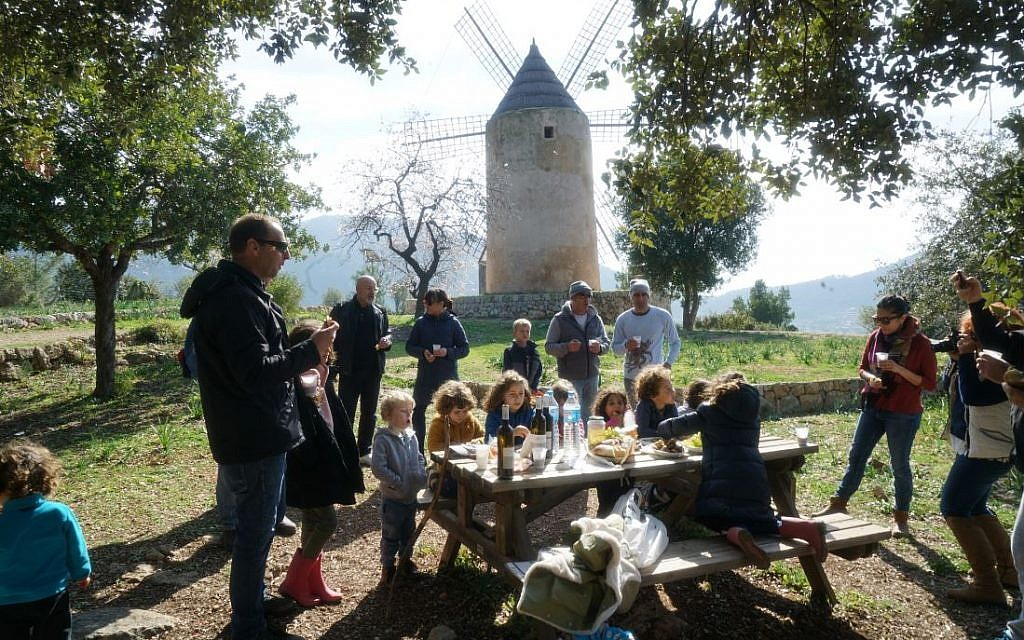 Members of the Jewish community of Mallorca, Spain, attend a Tu b'Shvat picnic, February 10, 2019. (Cnaan Liphshiz)