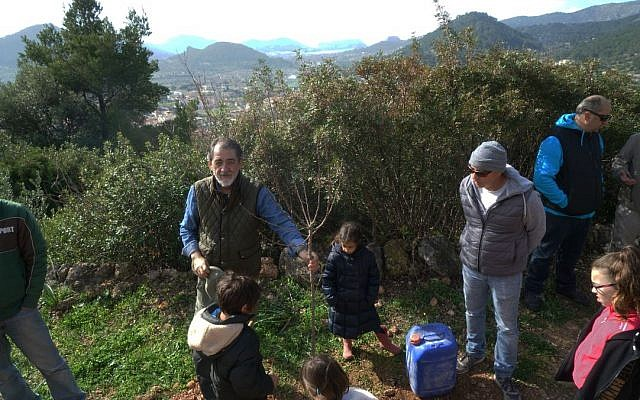 Arie Girondi, left, the president of the Jewish Community of Mallorca, Spain, plants a tree on Tu b'Shvat with other local Jews, February 10, 2019. (Cnaan Liphshiz)