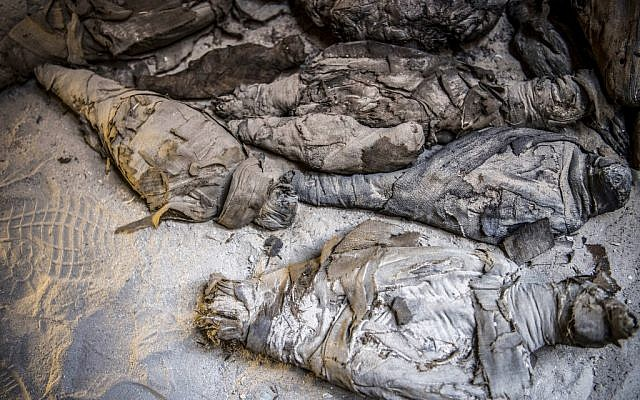 This picture taken on April 5, 2019 shows mummified animals found inside a newly-discovered tomb dating to the Ptolemaic era (323-30 BC) at the Diabat necropolis near the city of Akhmim in Egypt's southern Sohag province. (Khaled DESOUKI / AFP)
