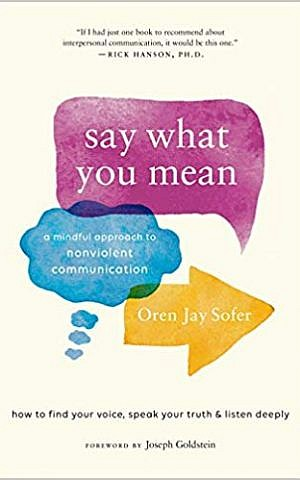 'Say What You Mean,' by Oren Jay Sofer. (Courtesy)