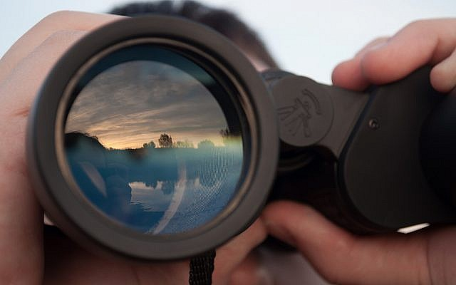 Illustrative image of scouting, searching for tech firms in Israel (SimCh; iStock by Getty Images)