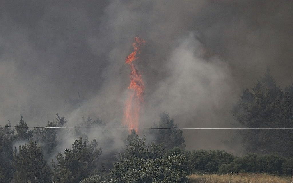 Fire engulfs trees in a burning forest amidst extreme heat wave near the Israeli city of Modi'in on May 23, 2019. (Ahmad GHARABLI / AFP)