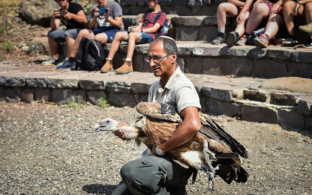 Rivlin says 'national plans' needed to protect animals after vulture poisoning