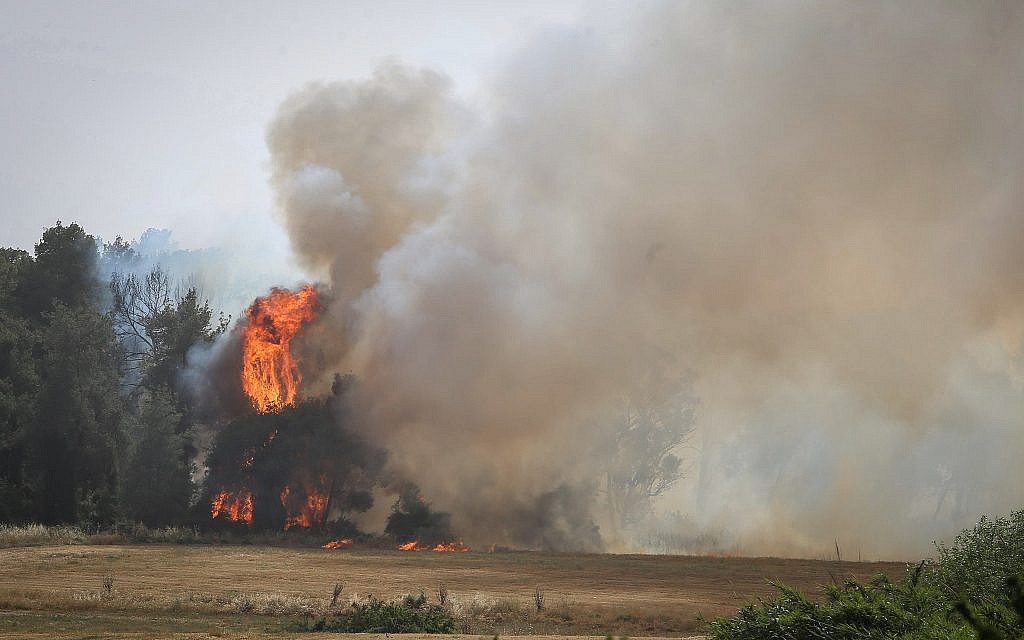 View of a fire raging in near the Ben Shemen Forest, on May 23, 2019. (Flash90)