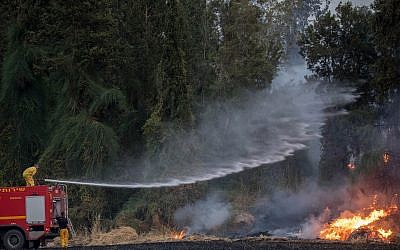 Firefighters try to extinguish a forest fire near Kibbutz Harel on May 23, 2019. (Yonatan Sindel/Flash90)