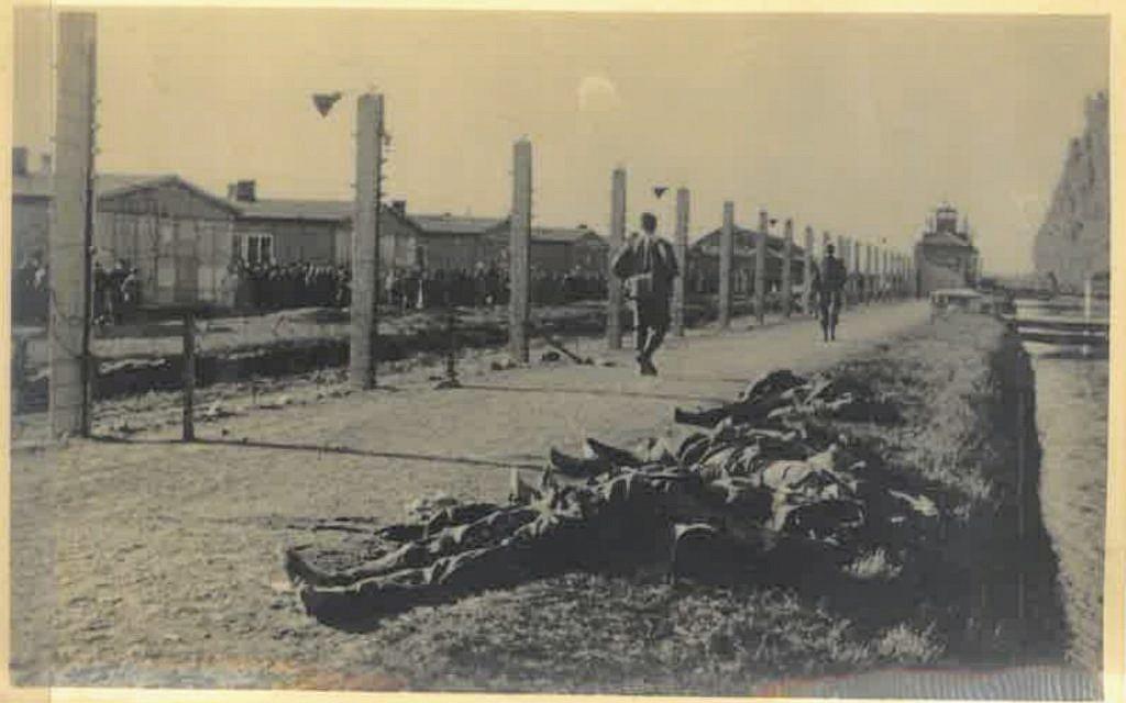 Newly revealed photographs chronicle aftermath of Dachau's liberation