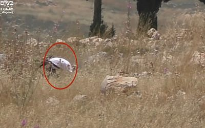 Screen capture from video allegedly showing an off-duty Israeli army soldier setting fire to a Palestinian farmer's field, in the northern West Bank, on May 17, 2019. (B'Tselem)