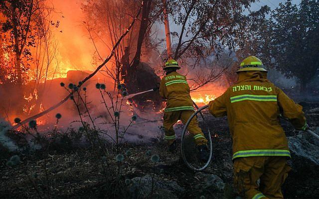 Firefighters battle a blaze near Kibbutz Harel in central Israel, May 23, 2019. (Yonatan Sindel/Flash90)