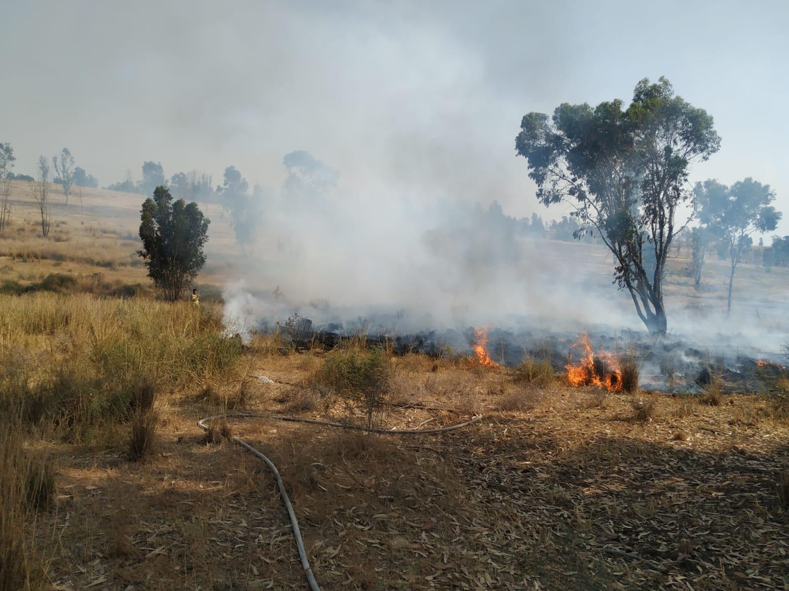 Incendiary balloon sparks blaze in Gaza border region | The