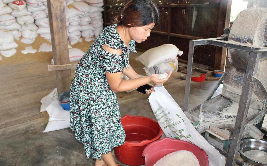 Zenan Sumlut examines rice at the organic rice mill she now manages in Kachin, Myanmar. (Emily Fishbein/Times of Israel)