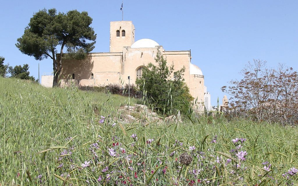 Flowers bloom on Jerusalem's Squill Hill. A walk around the hill provides day hikers a panoramic view of the city. (Shmuel Bar-Am)