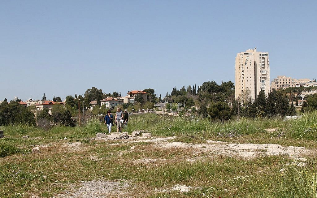 Jerusalem's Squill Hill, or Bible Hill, blooms in the springtime. (Shmuel Bar-Am)
