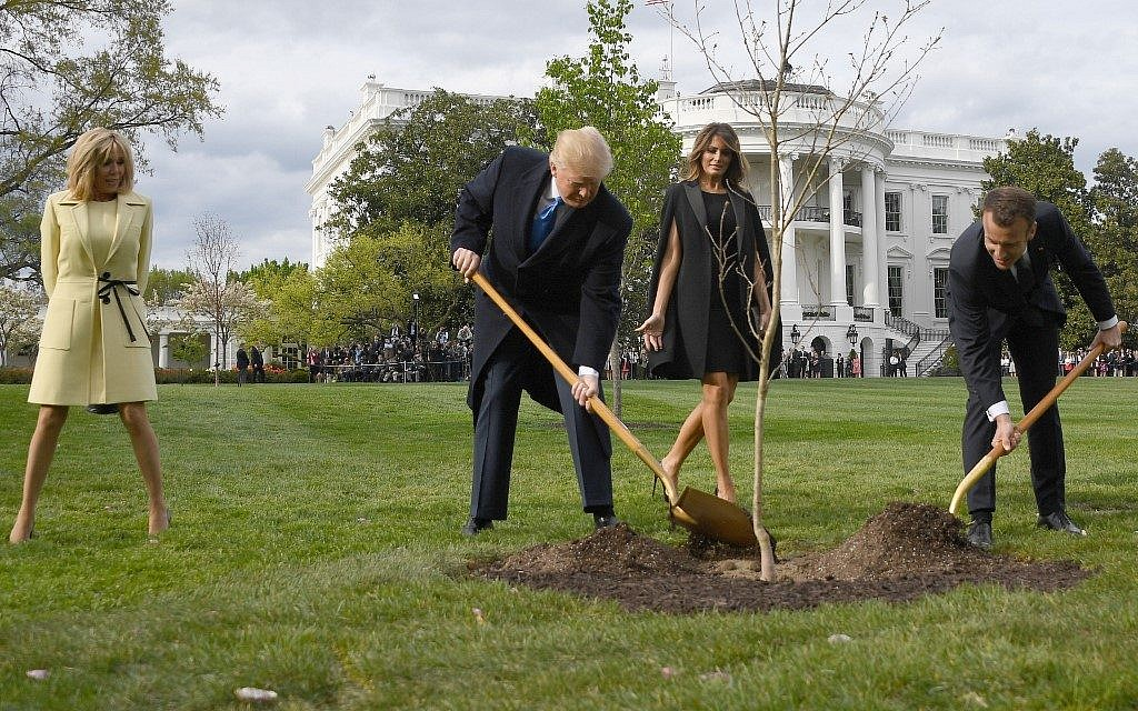 Tree symbolising Trump-Macron friendship 'has died'