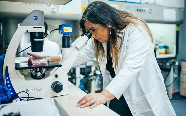 Prof. Marcelle Machluf at her lab in the Technion - Israel Institute of Technology (Courtesy)