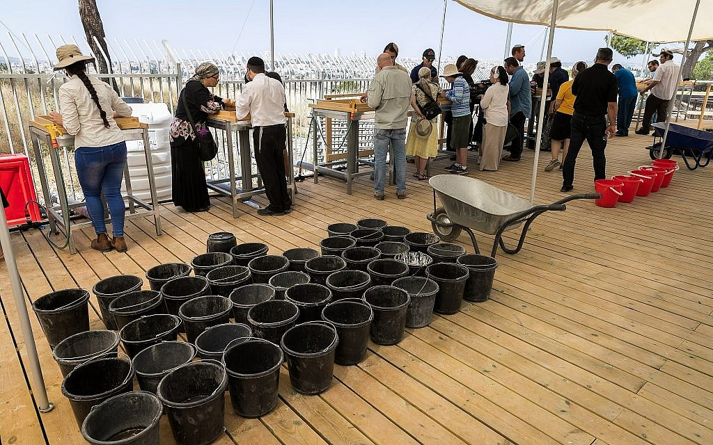 Buckets of earth from the Temple Mount awaiting visitors at the relaunch of the Temple Mount Sifting Project, June 2, 2019. (Yosef Huri)