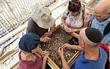 Visitors sifting buckets of earth from the Temple Mount at the relaunch of the Temple Mount Sifting Project, June 2, 2019. (Yosef Huri)
