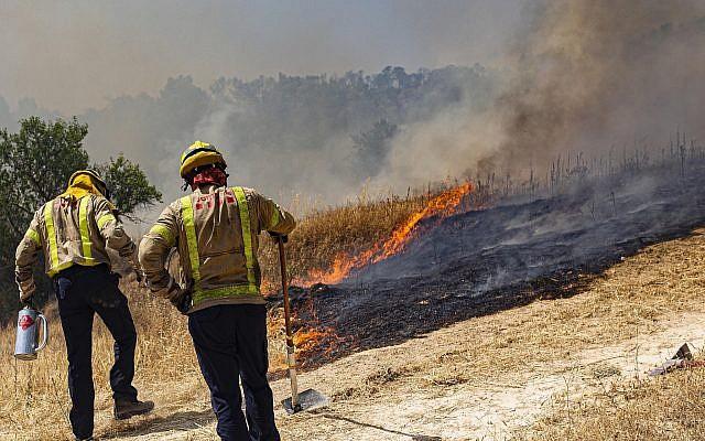 Firefighters try to extinguish a wildfire in Palma d'Ebre, near Tarragona, Spain on June 27, 2019. (AP Photo/Jordi Borras)