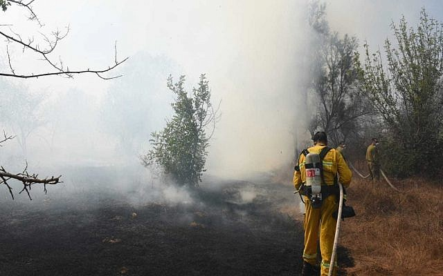 File: Firefighters battle a brushfire in southern Israel near the Gaza border that was started by an incendiary device launched from the Gaza Strip on June 24, 2019. (Yankele Grossfeld/Sha'ar Hanegev Regional Council)