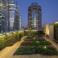 The rooftop, urban garden of L28 Culinary Platform, the latest experiment from Start-Up Nation Central. (Courtesy Start-Up Nation Central)