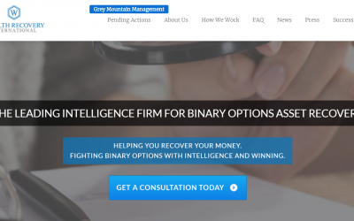 A screenshot of Wealth Recovery International's home page, as it appeared on June 10, 2019