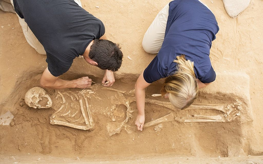 Excavation of the Philistine Cemetery at Ashkelon (Melissa Aja/Courtesy Leon Levy Expedition to Ashkelon)