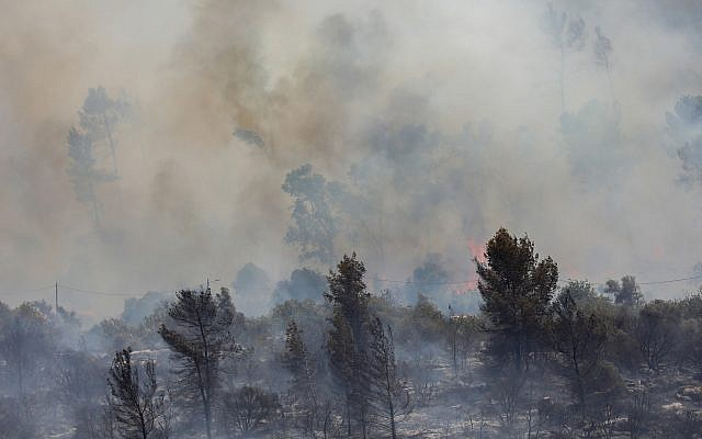 A brush fire near Moshav Aderet, July 17, 2019. (Noam Revkin Fenton/Flash90)