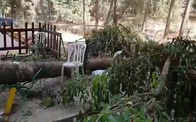 Screen capture from video of the scene where a falling branch killed a 10-year-old boy at an amusement park near to Lachish, July 17, 2019. (Twitter)