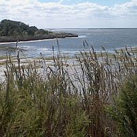 False Cape State Park, Virginia Beach, Va., September 2005. (CC BY-SA 3.0 Wikipedia)