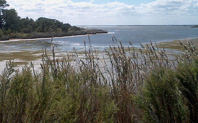 False Cape State Park, Virginia Beach, Va., September 2005. (CC BY-SA 3.0 Wikipedia)