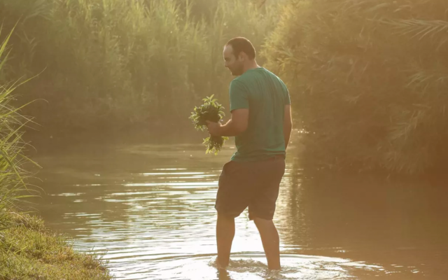 Forager Yatir Sade combing the waters of the rivers and sea close to his home in the northern coastal plain of Israel (Courtesy Yatir Sade)