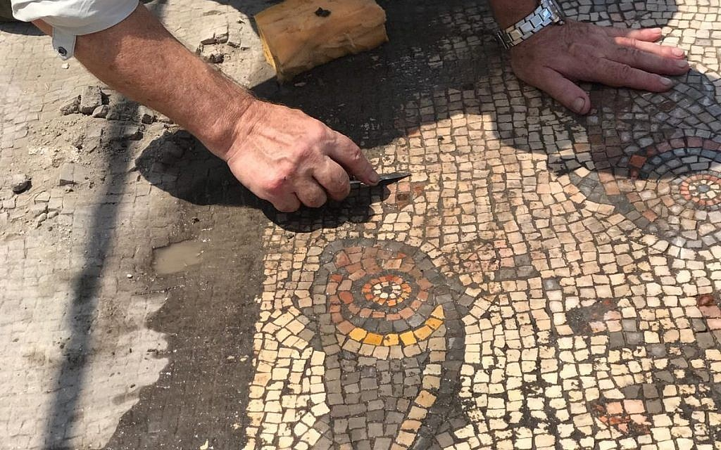 Detail from a mosaic uncovered in the 'Burnt Church' at the Hippos-Sussita Excavation Project at the Susita National Park, summer 2019. (courtesy)