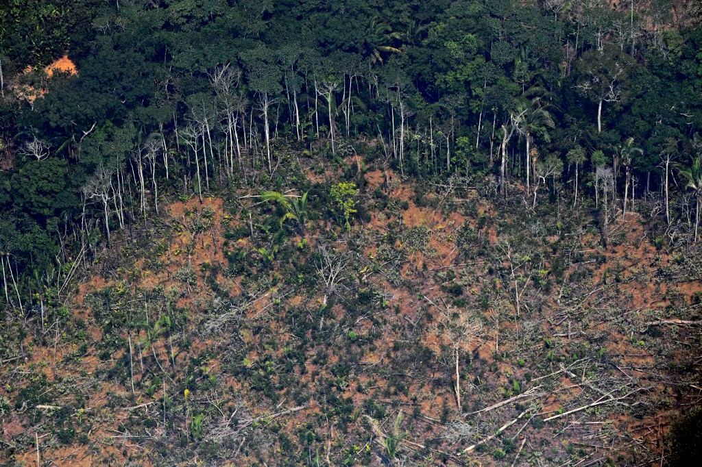 Aerial picture showing a deforested piece of land in the Amazon rainforest near an area affected by fires, about 65 km from Porto Velho, in the state of Rondonia, in northern Brazil, on August 23, 2019.(CARL DE SOUZA / AFP)