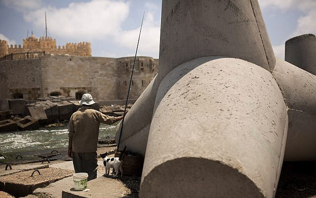 A fisherman and his cat stand beside a cement barrier placed as reinforcement against rising water levels near the citadel in Alexandria, Egypt, August 8, 2019. (Maya Alleruzzo/AP)